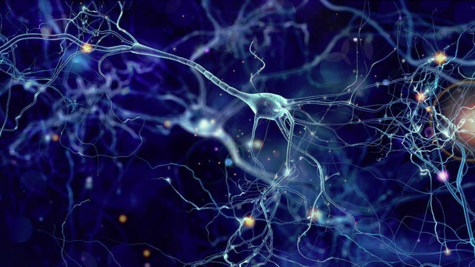 Más sinapsis